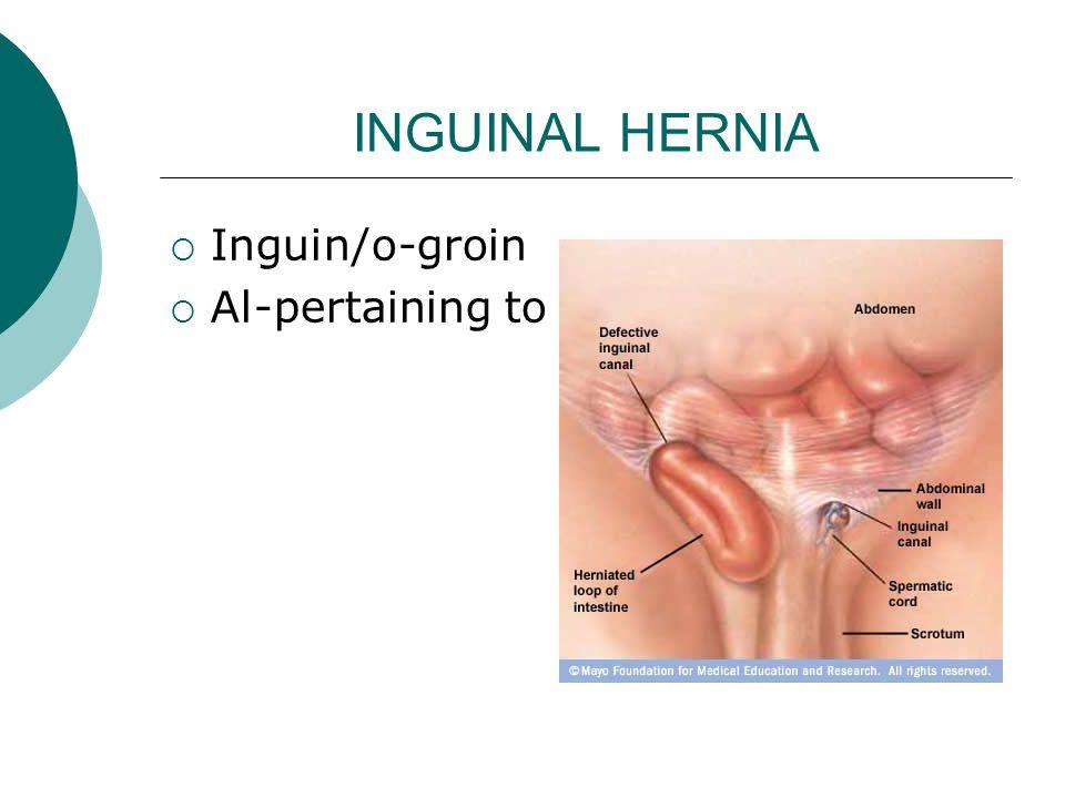 INGUINAL HERNIA  Inguin/o-groin  Al-pertaining to