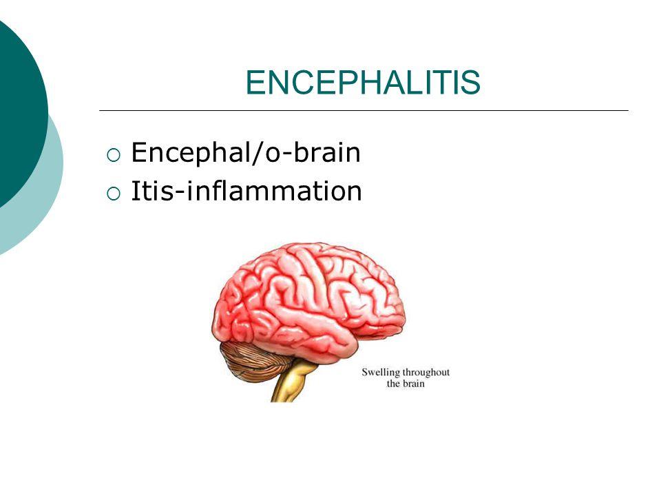 ENCEPHALITIS  Encephal/o-brain  Itis-inflammation
