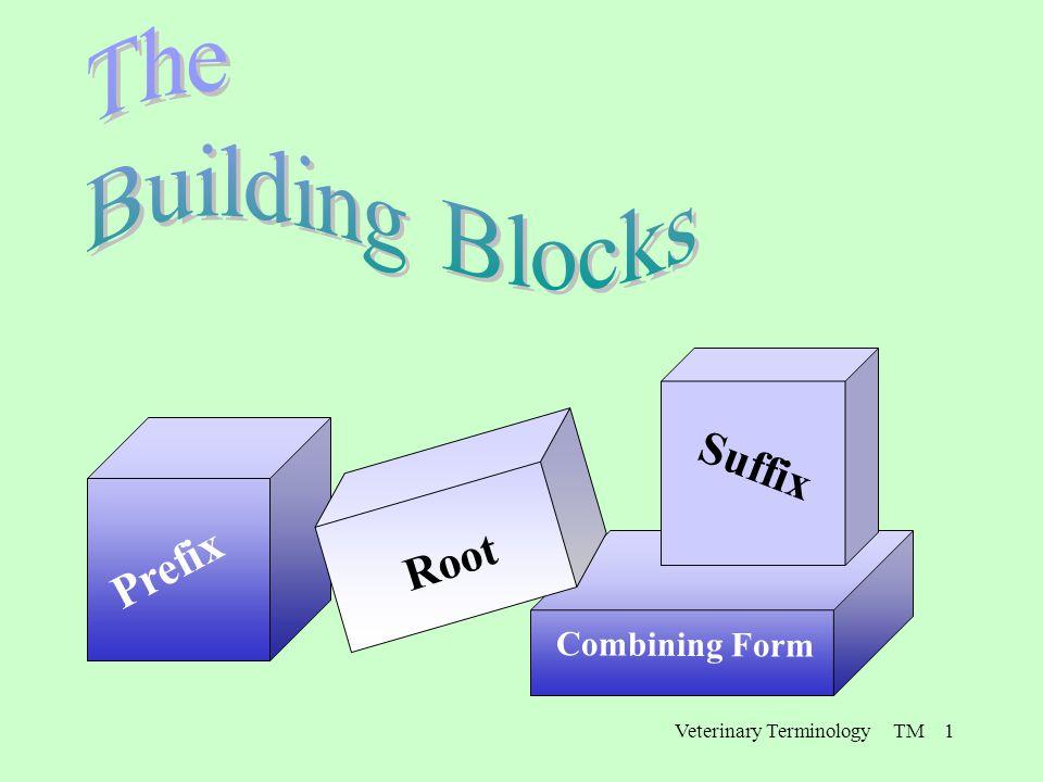 Veterinary Terminology TM 1 Prefix Combining Form Root Suffix
