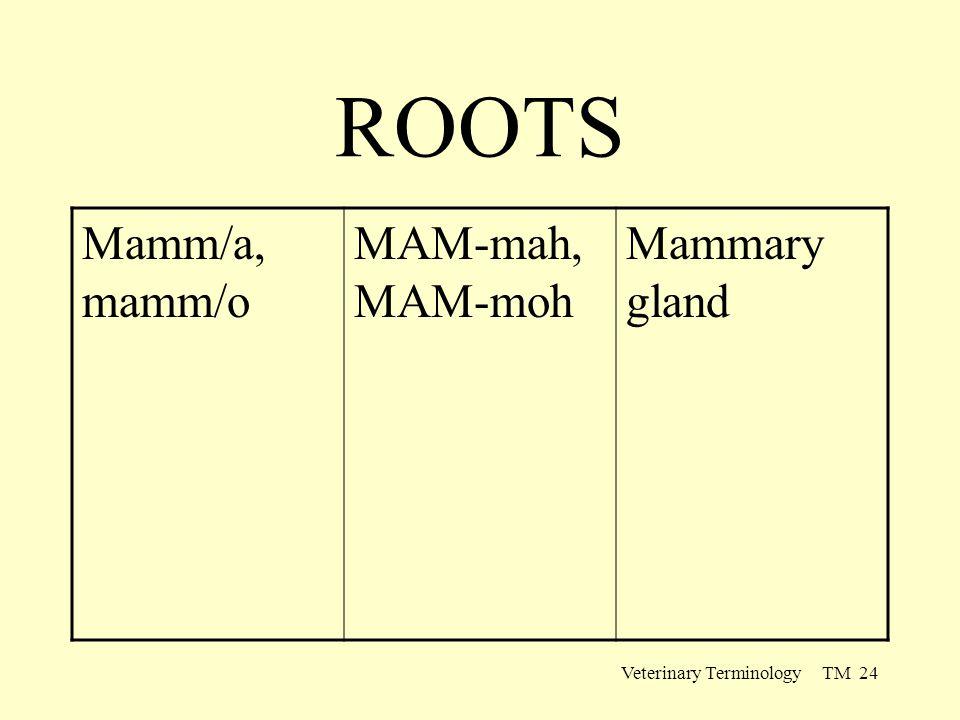Veterinary Terminology TM 24 ROOTS Mamm/a, mamm/o MAM-mah, MAM-moh Mammary gland