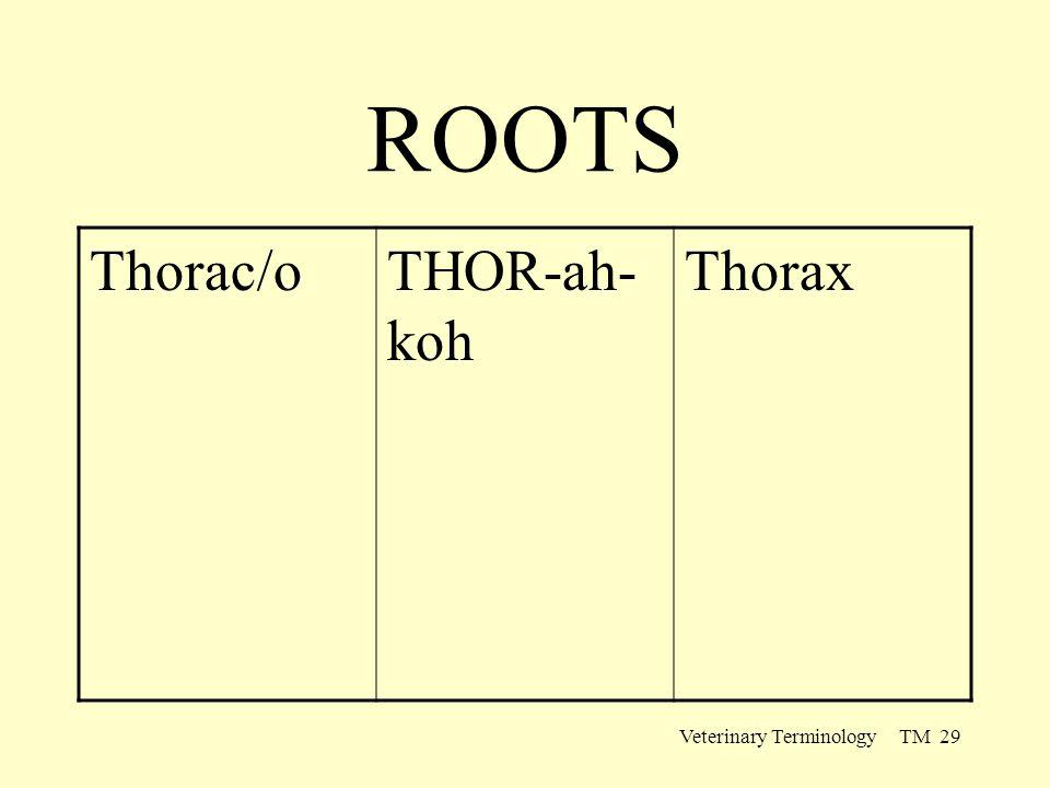 Veterinary Terminology TM 29 ROOTS Thorac/oTHOR-ah- koh Thorax