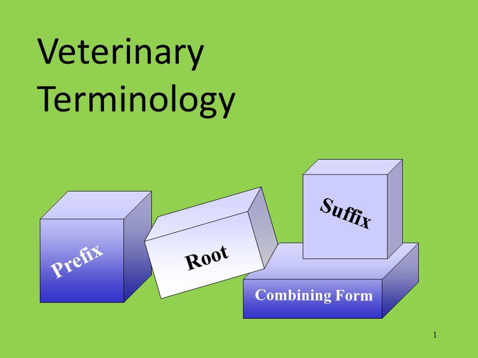 1 Prefix Combining Form Root Suffix Veterinary Terminology