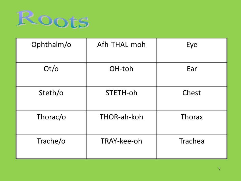 7 Ophthalm/oAfh-THAL-mohEye Ot/oOH-tohEar Steth/oSTETH-ohChest Thorac/oTHOR-ah-kohThorax Trache/oTRAY-kee-ohTrachea
