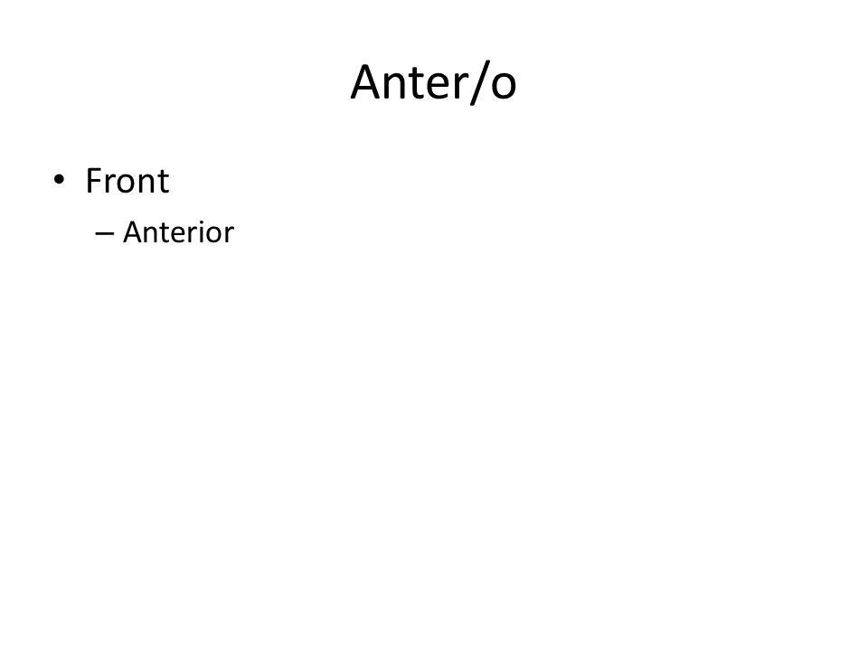 Anter/o Front – Anterior