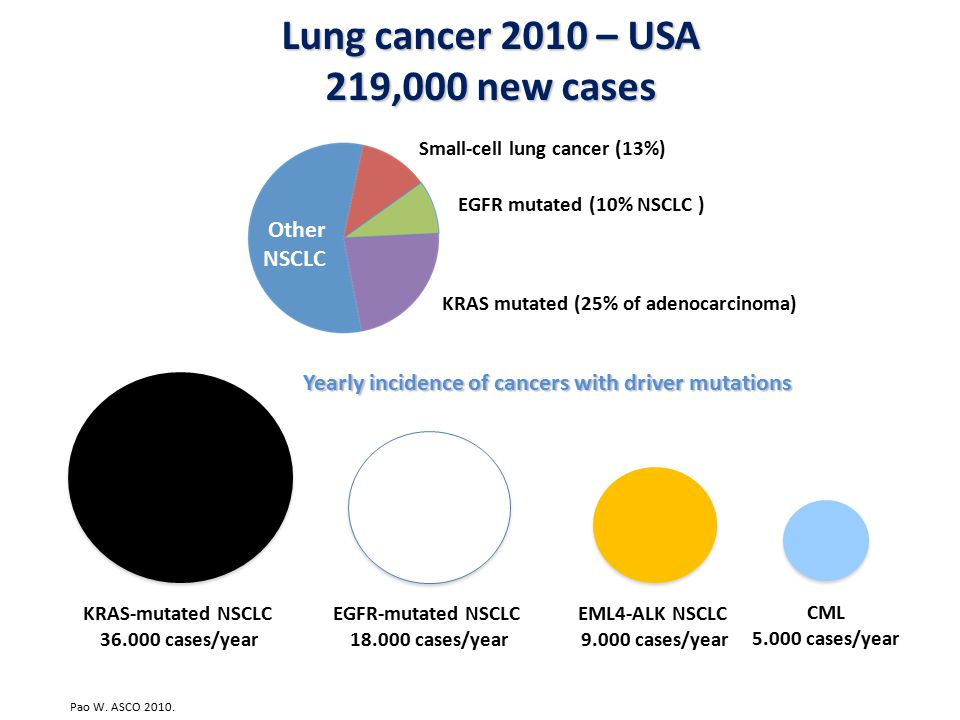 Lung cancer 2010 – USA 219,000 new cases KRAS-mutated NSCLC 36.000 cases/year EGFR-mutated NSCLC 18.000 cases/year EML4-ALK NSCLC 9.000 cases/year CML