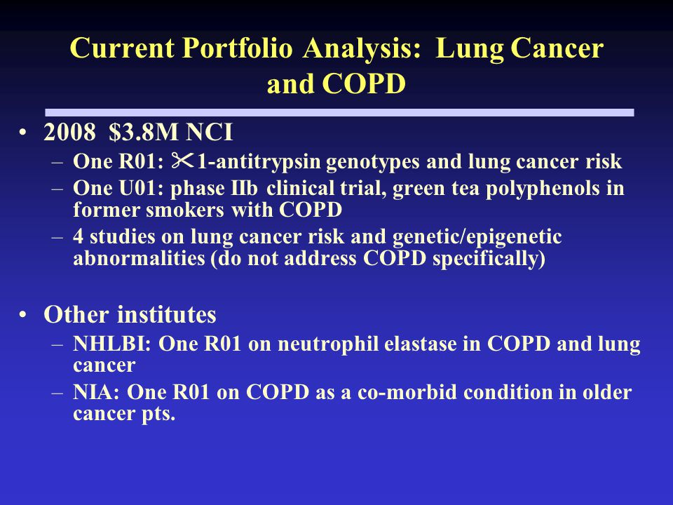 Current Portfolio Analysis: Lung Cancer and COPD 2008 $3.8M NCI –One R01:  1-antitrypsin genotypes and lung cancer risk –One U01: phase IIb clinical trial, green tea polyphenols in former smokers with COPD –4 studies on lung cancer risk and genetic/epigenetic abnormalities (do not address COPD specifically) Other institutes –NHLBI: One R01 on neutrophil elastase in COPD and lung cancer –NIA: One R01 on COPD as a co-morbid condition in older cancer pts.