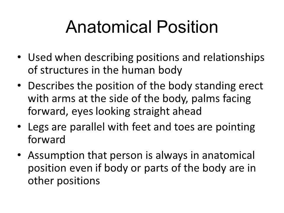 Abbreviations Relating to Body Structure