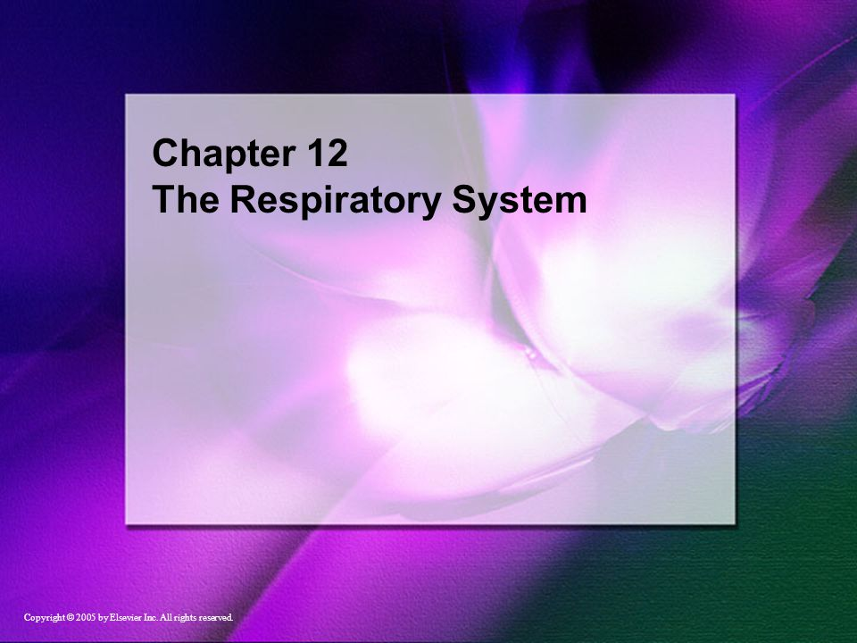 Chapter 12 The Respiratory System Copyright © 2005 by Elsevier Inc. All rights reserved.