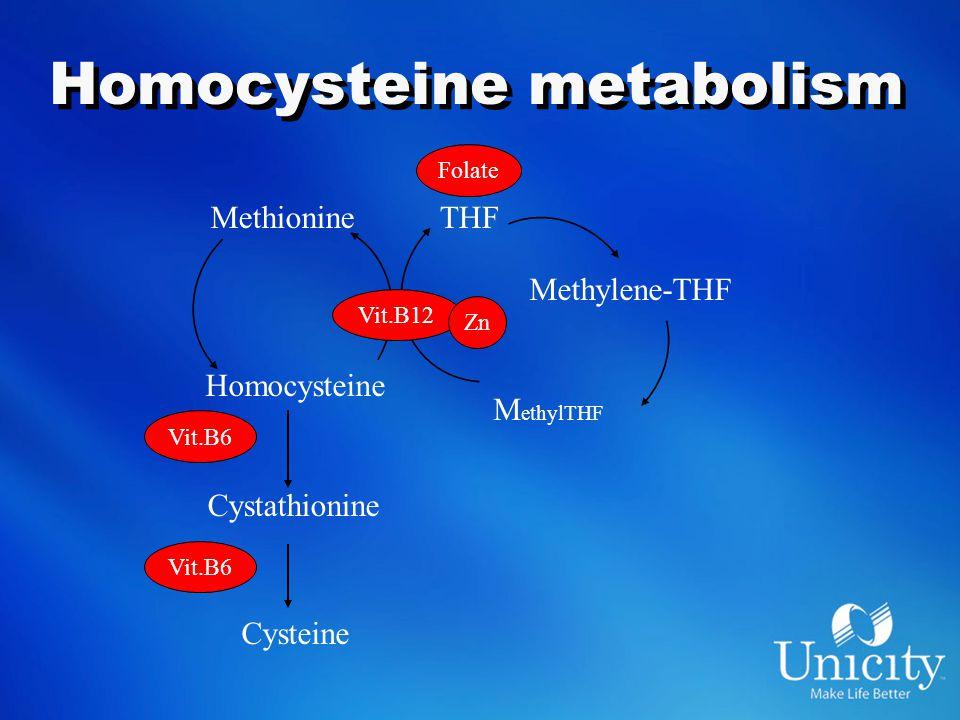 Homocysteine metabolism Methionine Homocysteine Vit.B12 THF Cystathionine Cysteine Vit.B6 Methylene-THF M ethylTHF Folate Zn