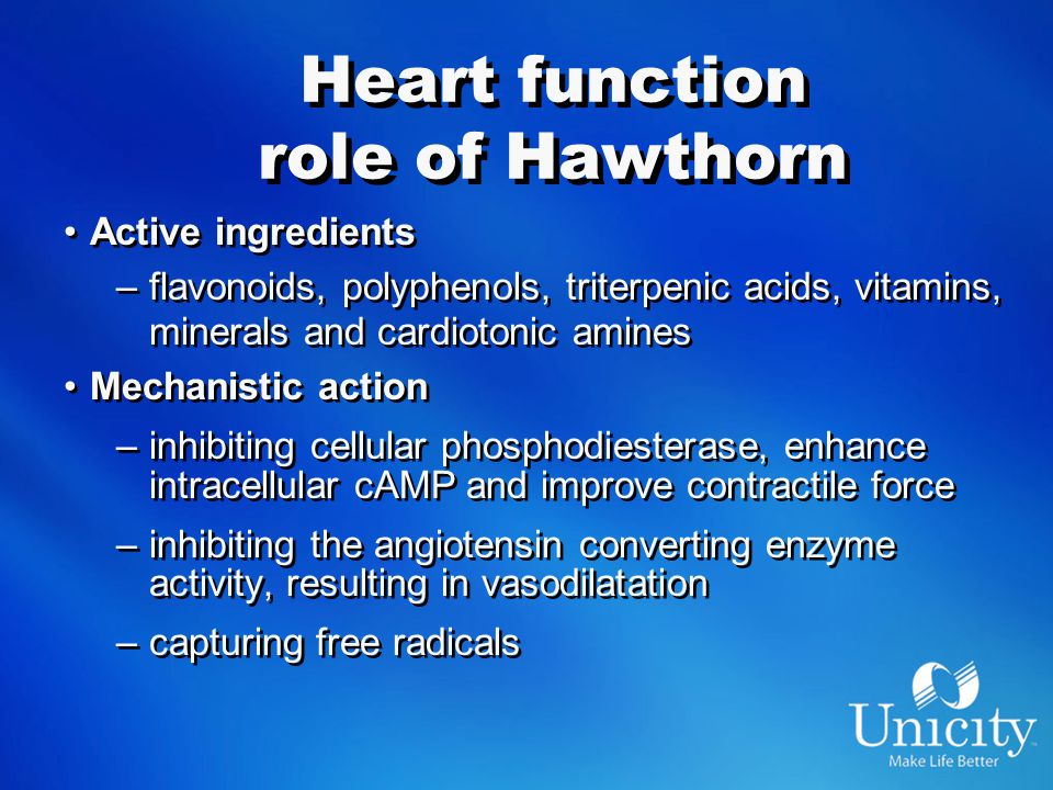 Heart function role of Hawthorn Active ingredients –flavonoids, polyphenols, triterpenic acids, vitamins, minerals and cardiotonic amines Mechanistic action –inhibiting cellular phosphodiesterase, enhance intracellular cAMP and improve contractile force –inhibiting the angiotensin converting enzyme activity, resulting in vasodilatation –capturing free radicals Active ingredients –flavonoids, polyphenols, triterpenic acids, vitamins, minerals and cardiotonic amines Mechanistic action –inhibiting cellular phosphodiesterase, enhance intracellular cAMP and improve contractile force –inhibiting the angiotensin converting enzyme activity, resulting in vasodilatation –capturing free radicals