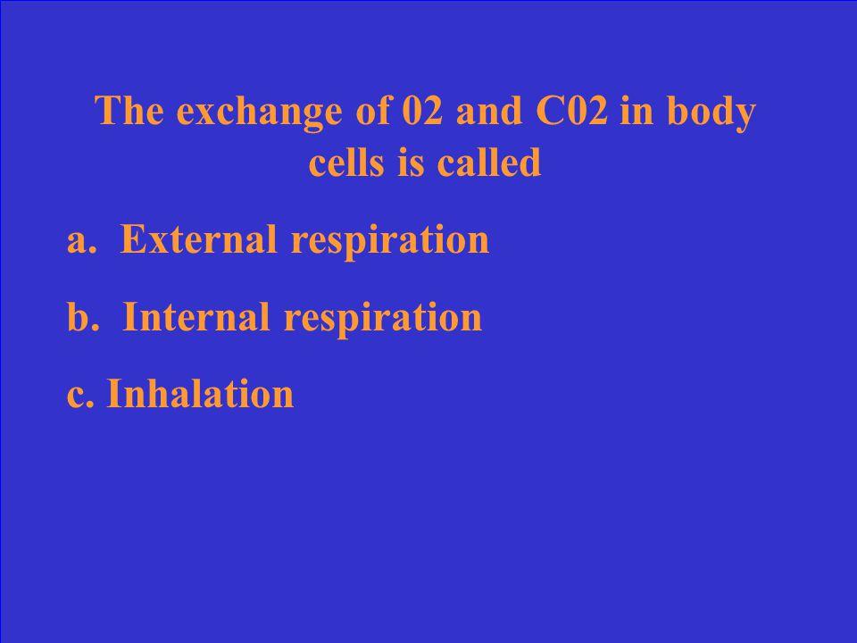 C. Emphysema