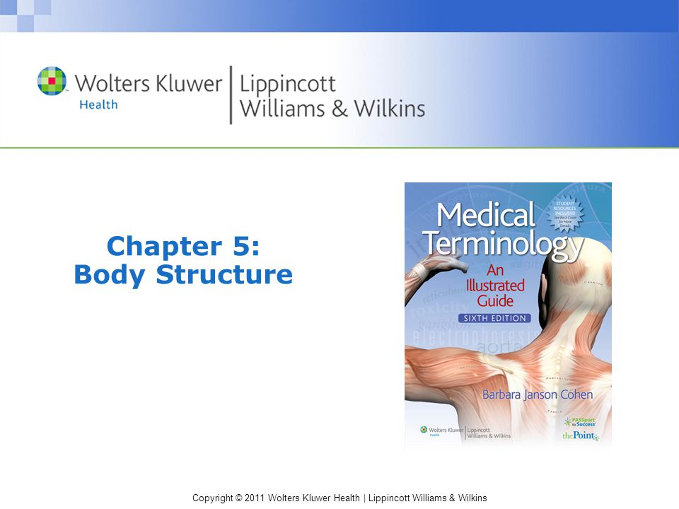 Copyright © 2011 Wolters Kluwer Health | Lippincott Williams & Wilkins Chapter 5: Body Structure