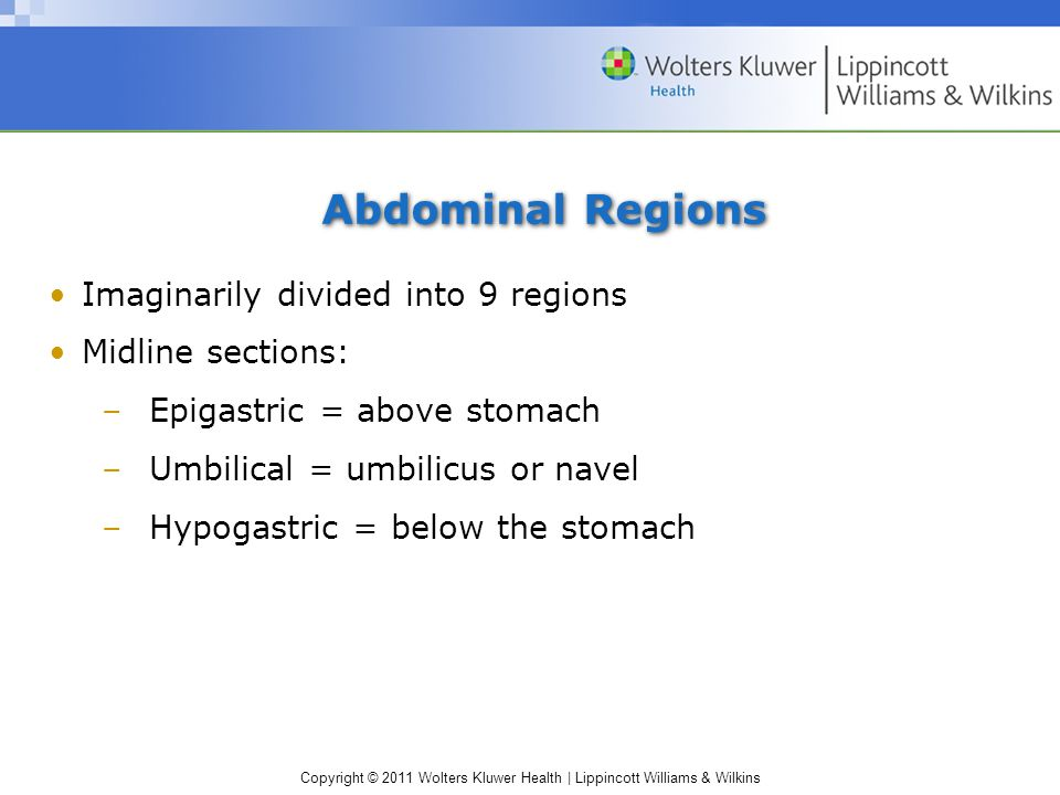 Copyright © 2011 Wolters Kluwer Health | Lippincott Williams & Wilkins Abdominal Regions Imaginarily divided into 9 regions Midline sections: –Epigastric = above stomach –Umbilical = umbilicus or navel –Hypogastric = below the stomach