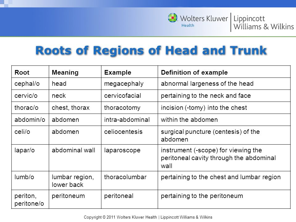 Copyright © 2011 Wolters Kluwer Health | Lippincott Williams & Wilkins Roots of Regions of Head and Trunk RootMeaningExampleDefinition of example cephal/oheadmegacephalyabnormal largeness of the head cervic/oneckcervicofacialpertaining to the neck and face thorac/ochest, thoraxthoracotomyincision (-tomy) into the chest abdomin/oabdomenintra-abdominalwithin the abdomen celi/oabdomenceliocentesissurgical puncture (centesis) of the abdomen lapar/oabdominal walllaparoscopeinstrument (-scope) for viewing the peritoneal cavity through the abdominal wall lumb/olumbar region, lower back thoracolumbarpertaining to the chest and lumbar region periton, peritone/o peritoneumperitonealpertaining to the peritoneum