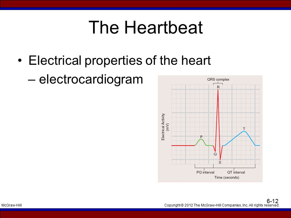 Copyright © 2012 The McGraw-Hill Companies, Inc. All rights reserved.McGraw-Hill 6-12 The Heartbeat Electrical properties of the heart – electrocardio