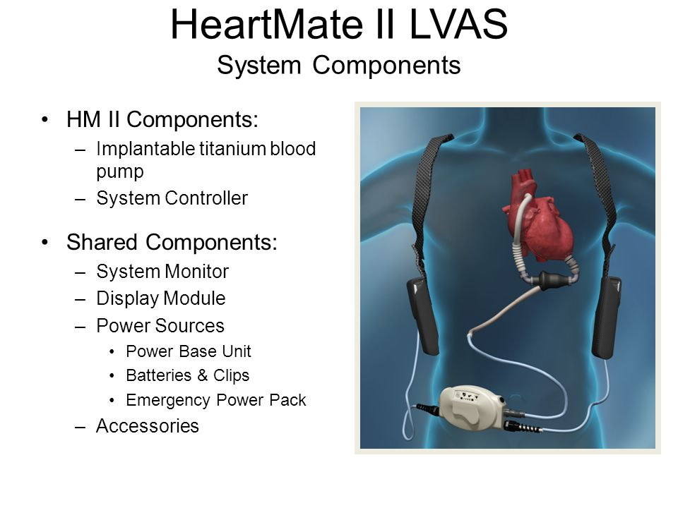 HeartMate II LVAS System Components HM II Components: –Implantable titanium blood pump –System Controller Shared Components: –System Monitor –Display