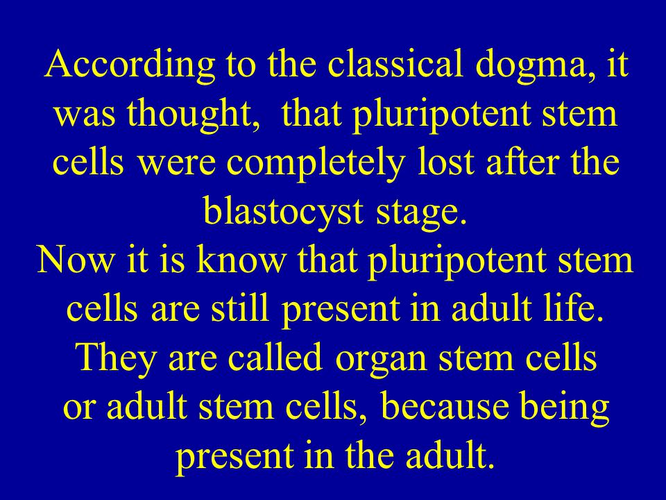 According to the classical dogma, it was thought, that pluripotent stem cells were completely lost after the blastocyst stage. Now it is know that plu