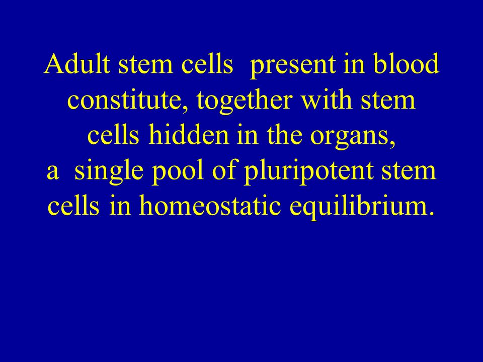 Adult stem cells present in blood constitute, together with stem cells hidden in the organs, a single pool of pluripotent stem cells in homeostatic eq