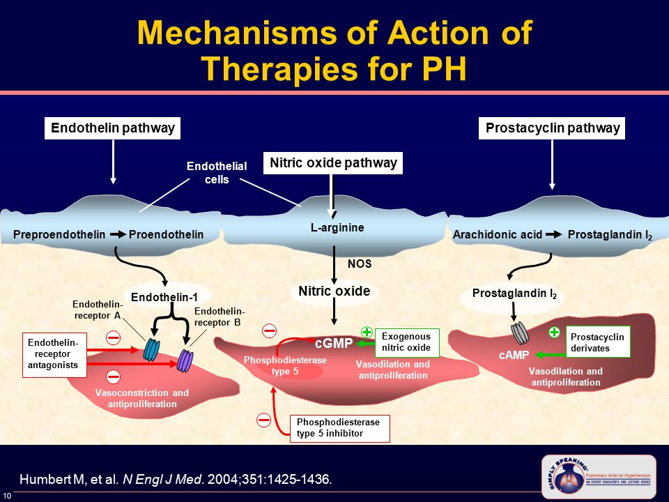 10 Mechanisms of Action of Therapies for PH Humbert M, et al.