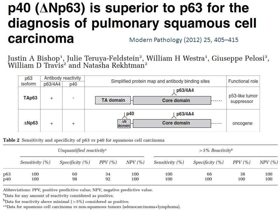 Modern Pathology (2012) 25, 405–415
