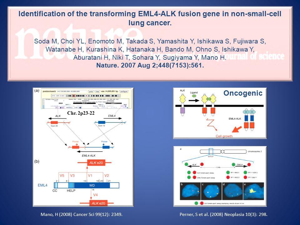 Chr. 2p23-22 Perner, S et al. (2008) Neoplasia 10(3): 298.Mano, H (2008) Cancer Sci 99(12): 2349.