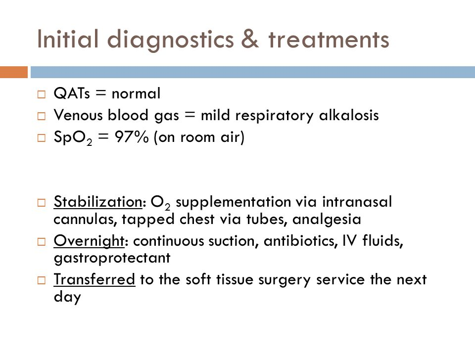 Initial diagnostics & treatments  QATs = normal  Venous blood gas = mild respiratory alkalosis  SpO 2 = 97% (on room air)  Stabilization: O 2 supplementation via intranasal cannulas, tapped chest via tubes, analgesia  Overnight: continuous suction, antibiotics, IV fluids, gastroprotectant  Transferred to the soft tissue surgery service the next day