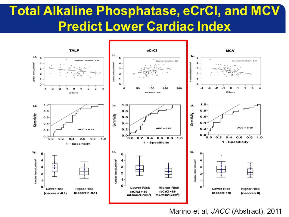 Total Alkaline Phosphatase, eCrCl, and MCV Predict Lower Cardiac Index Marino et al, JACC (Abstract), 2011