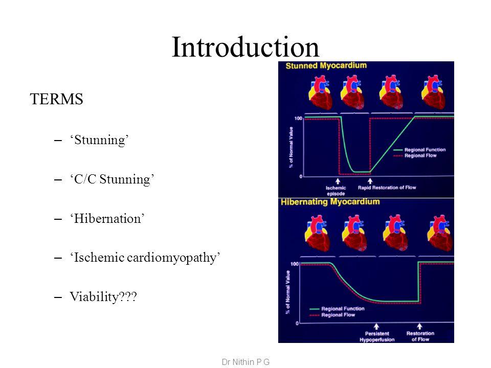 Introduction TERMS – 'Stunning' – 'C/C Stunning' – 'Hibernation' – 'Ischemic cardiomyopathy' – Viability??.