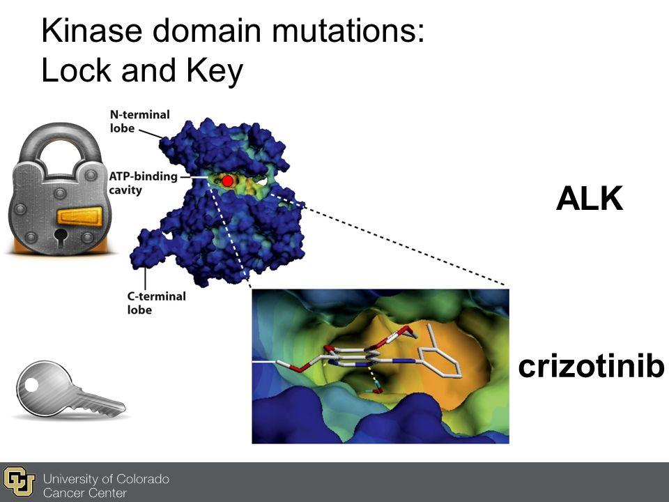 Kinase domain mutations: Lock and Key ALK crizotinib