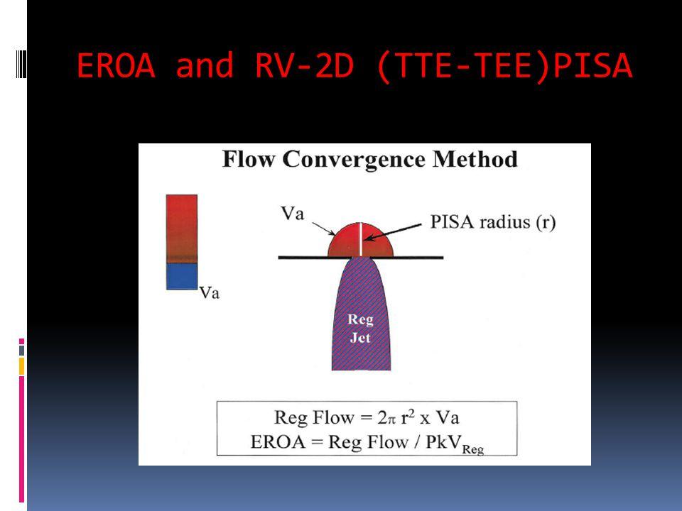 EROA and RV-2D (TTE-TEE)PISA