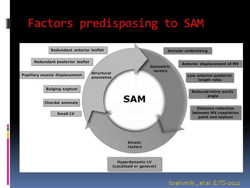 Factors predisposing to SAM Ibrahim M., et al. EJTS-2012