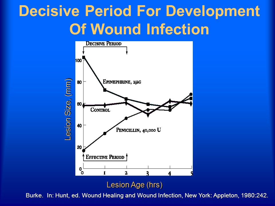 Burke. In: Hunt, ed. Wound Healing and Wound Infection, New York: Appleton, 1980:242. Decisive Period For Development Of Wound Infection Lesion Age (h