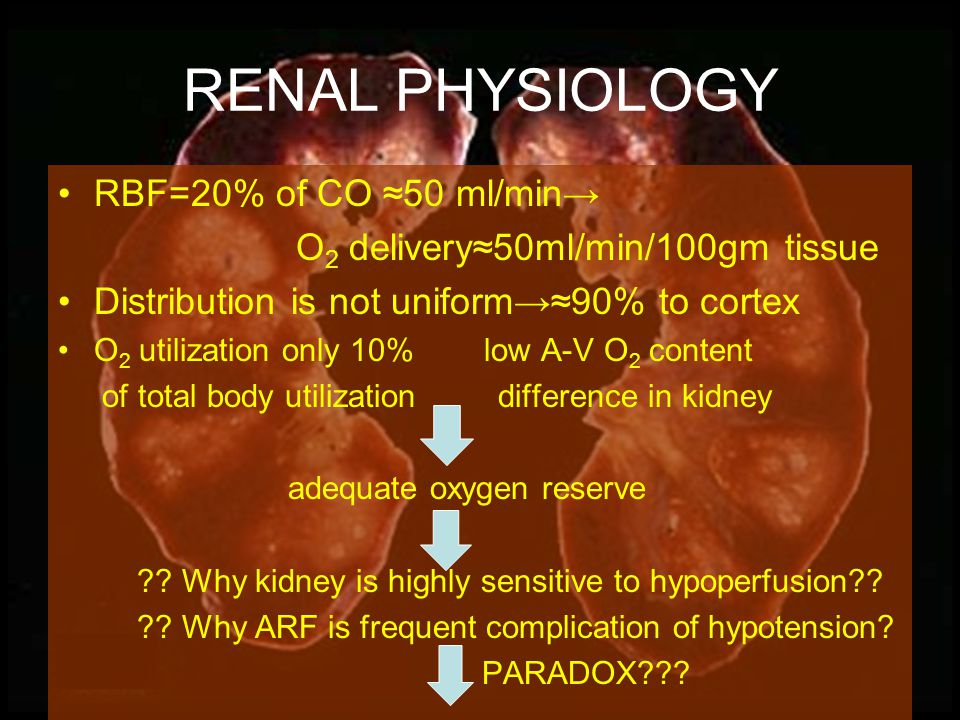 RENAL PHYSIOLOGY GFR autoregulated across wide range of ABP but urine output is not.