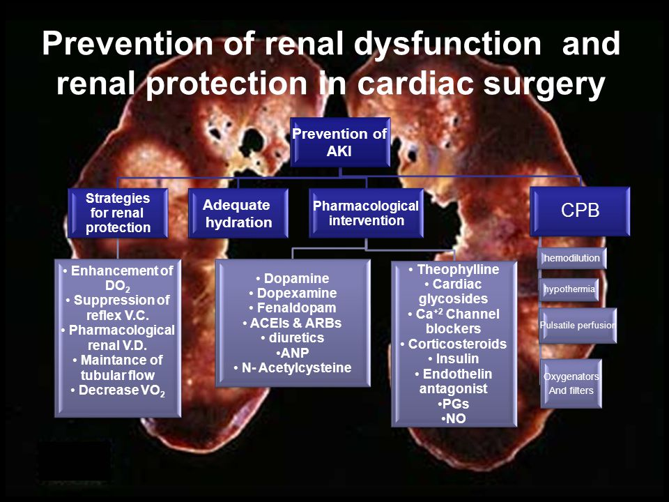 Strategies of Renal Protection 1.