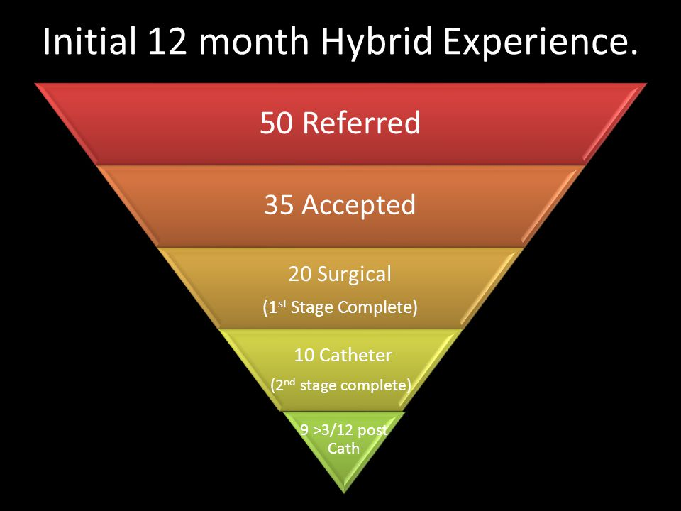 Initial 12 month Hybrid Experience.
