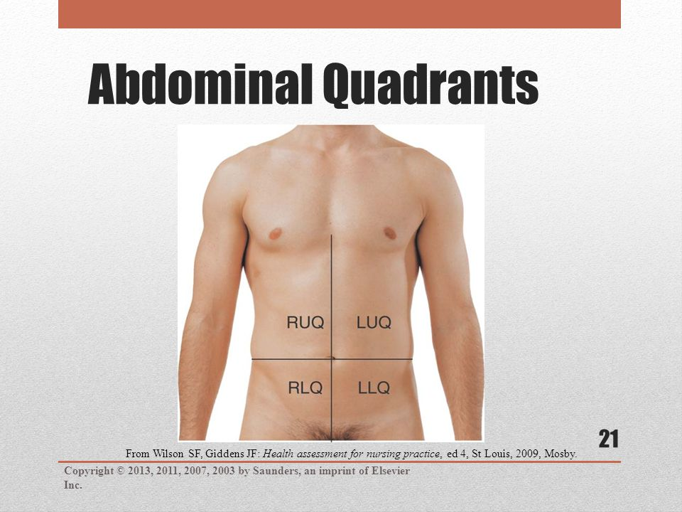 Abdominal Quadrants Copyright © 2013, 2011, 2007, 2003 by Saunders, an imprint of Elsevier Inc.