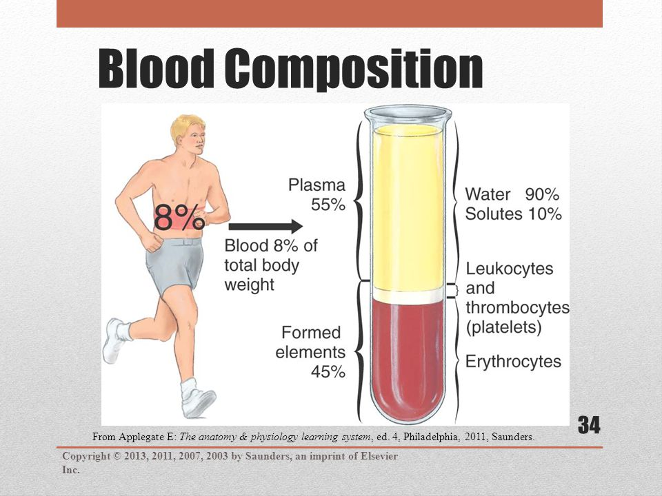 Blood Composition Copyright © 2013, 2011, 2007, 2003 by Saunders, an imprint of Elsevier Inc. 34 From Applegate E: The anatomy & physiology learning s