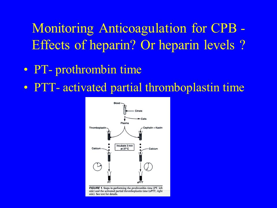 Monitoring Anticoagulation for CPB - Effects of heparin? Or heparin levels ? PT- prothrombin time PTT- activated partial thromboplastin time