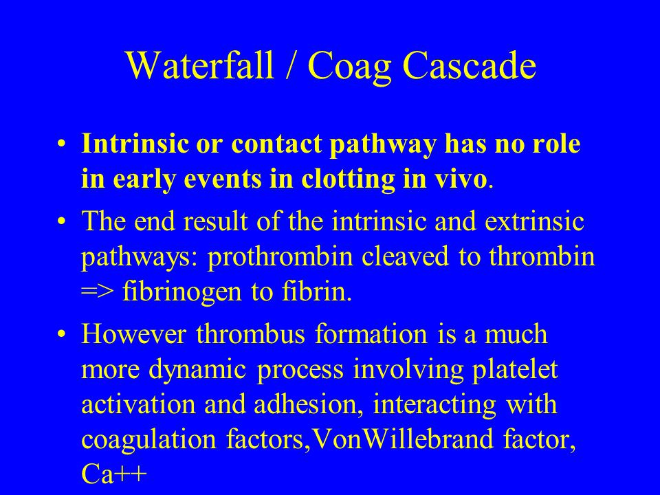 Waterfall / Coag Cascade Intrinsic or contact pathway has no role in early events in clotting in vivo. The end result of the intrinsic and extrinsic p