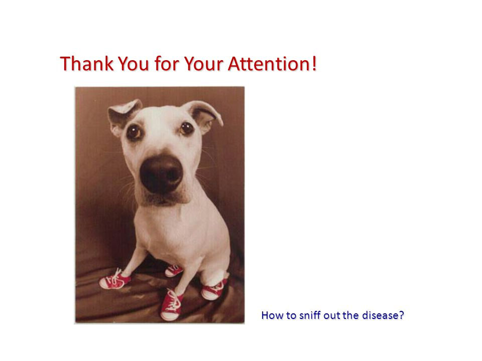 Thank You for Your Attention! How to sniff out the disease