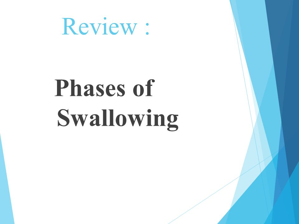 Three phases of Swallowing  1.Oral Phase – Voluntary  2.