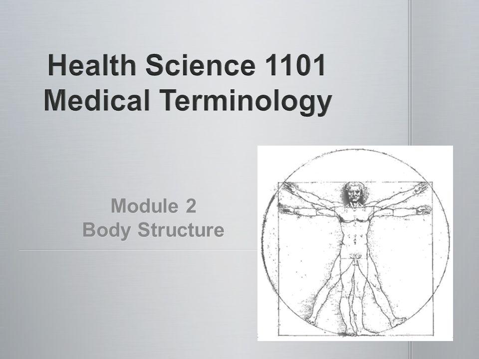 Module 2 Body Structure