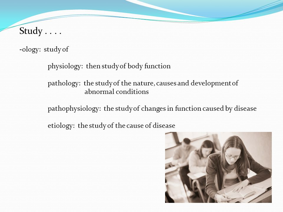 Study....