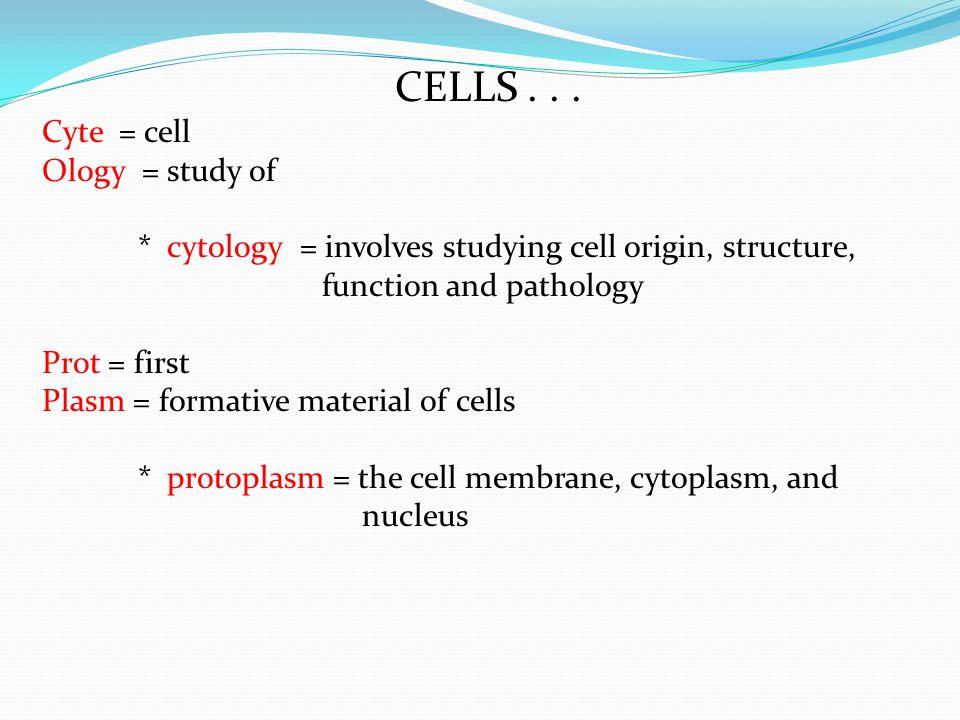 CELLS...