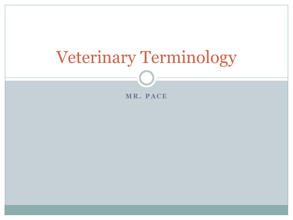 Directional Terminology Deep – further from the surface Superficial – closer to the surface