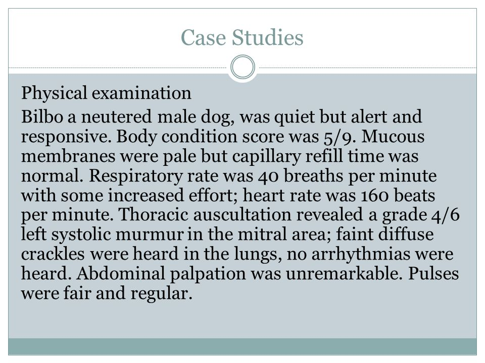 Case Studies Physical examination Bilbo a neutered male dog, was quiet but alert and responsive.