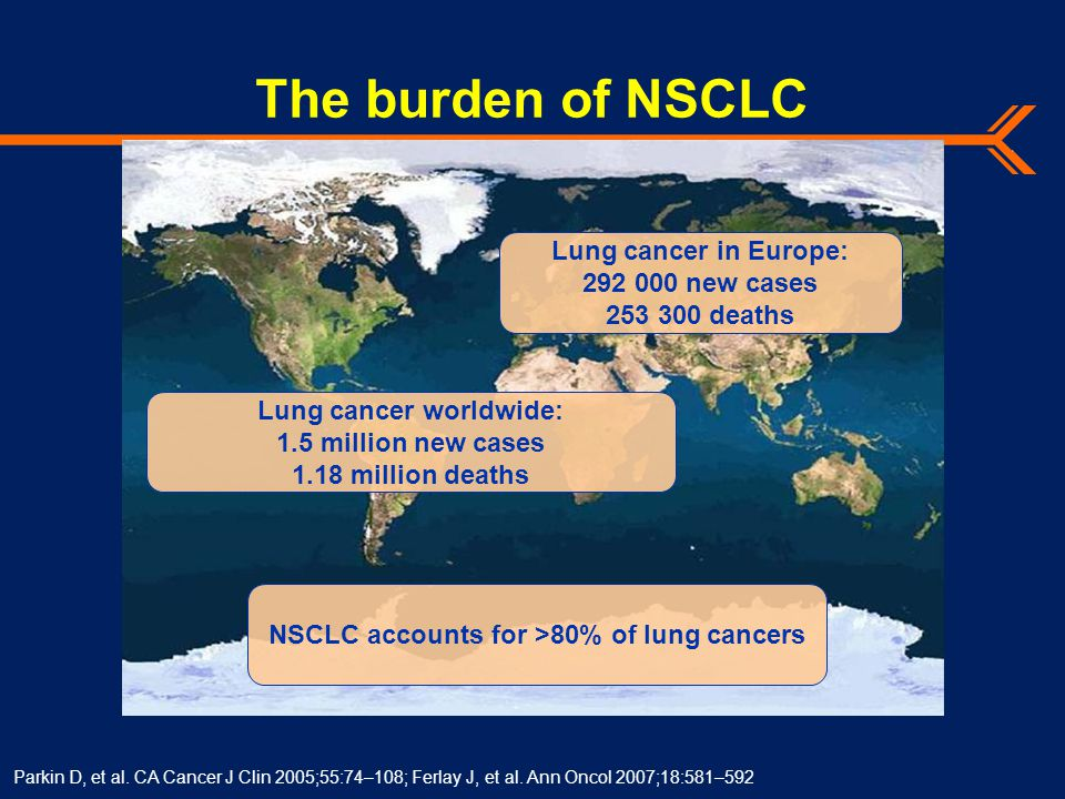 The burden of NSCLC Parkin D, et al. CA Cancer J Clin 2005;55:74–108; Ferlay J, et al.