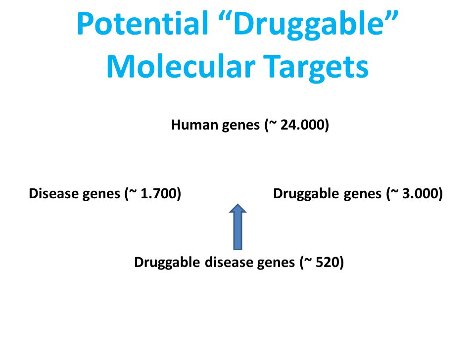 Potential Druggable Molecular Targets Human genes (~ 24.000) Disease genes (~ 1.700) Druggable genes (~ 3.000) Druggable disease genes (~ 520)
