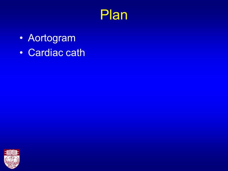 Plan Aortogram Cardiac cath
