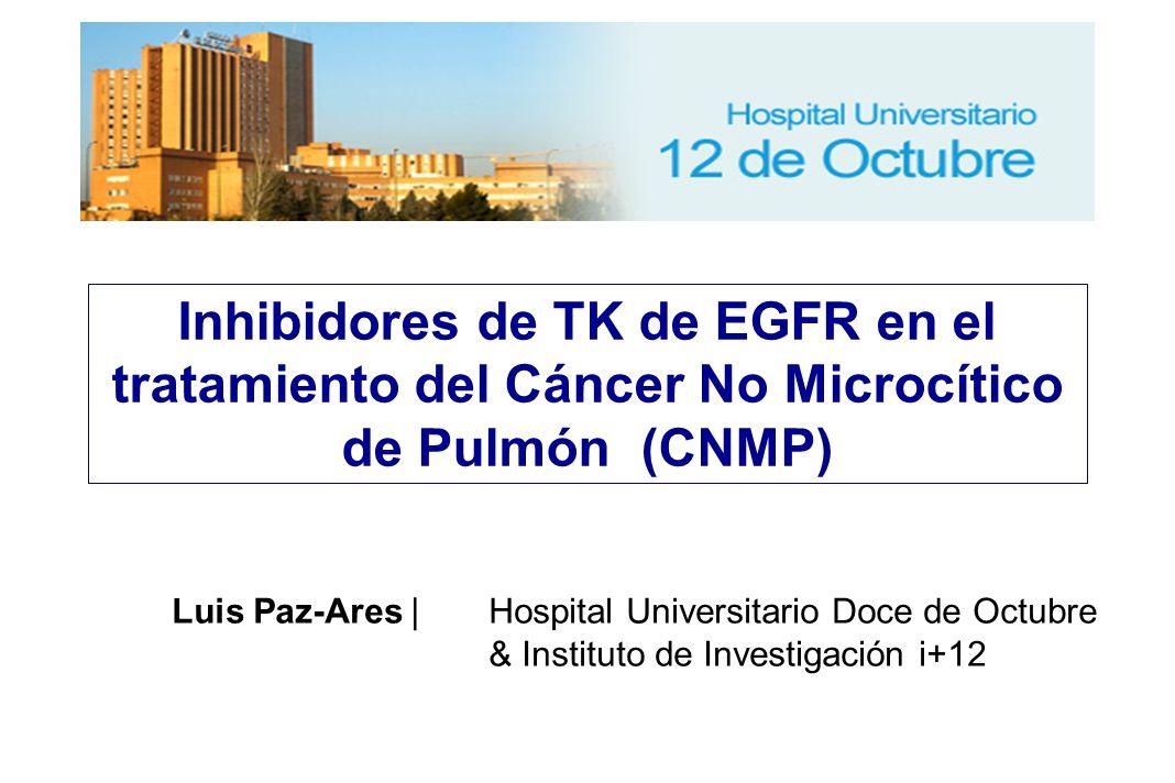 Inhibidores de TK de EGFR en el tratamiento del Cáncer No Microcítico de Pulmón (CNMP) Luis Paz-Ares  Hospital Universitario Doce de Octubre & Instituto de Investigación i+12